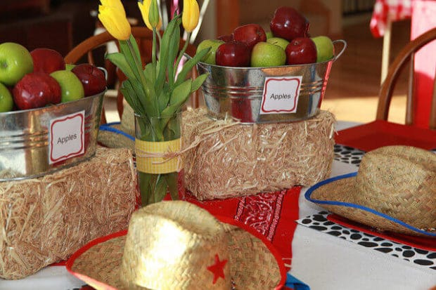 Boys Birthday Party Barnyard Themed Table Ideas
