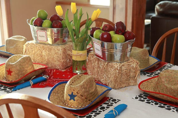 Boys birthday party barnyard themed table decoration ideas