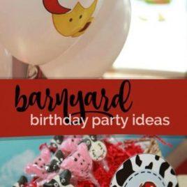Farm Themed Birthday Party