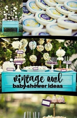Vintage Owl Baby Shower