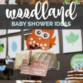 Woodland Buddies Baby Shower