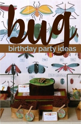 Bug Themed Birthday Party
