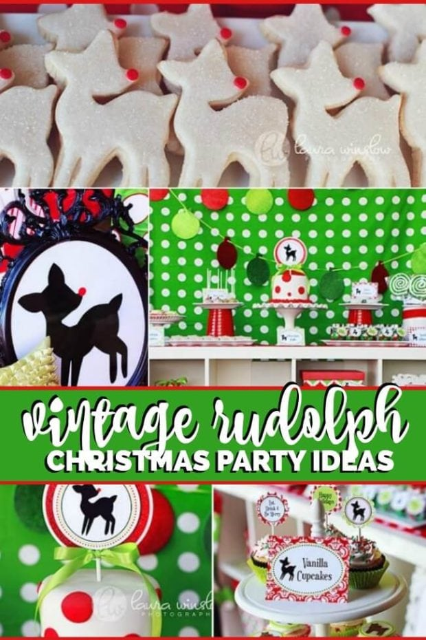 Christmas Birthday Party.Vintage Rudolph Christmas Birthday Party Ideas Spaceships