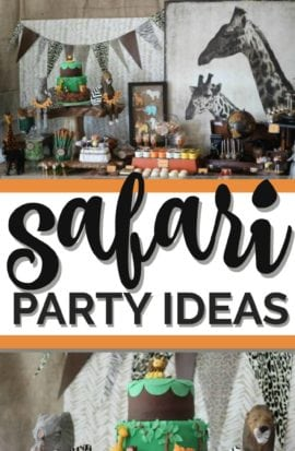 Safari Birthday Party Ideas
