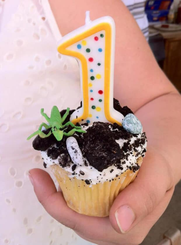 Insect Themed Birthday Party