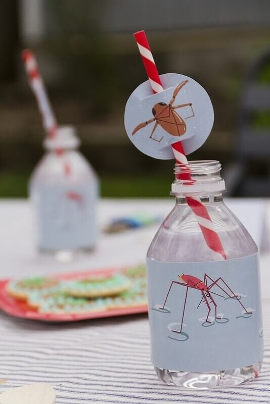 Boy's Bug Bash Birthday Party Decoration Ideas