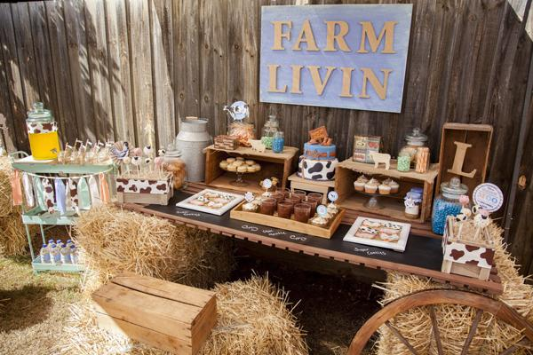 A Precious Farm Themed Boys 2nd Birthday Party