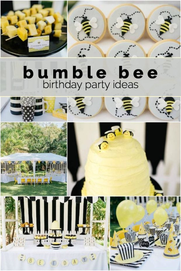 Bumble Bee Birthday Party Ideas For Boys