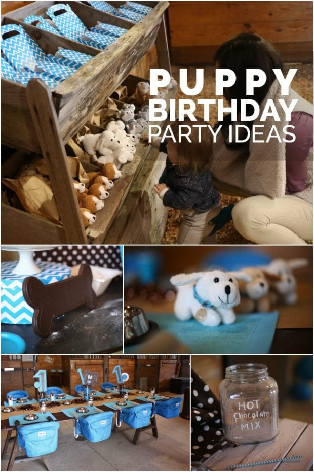 BOYS PUPPY BIRTHDAY PARTY IDEAS