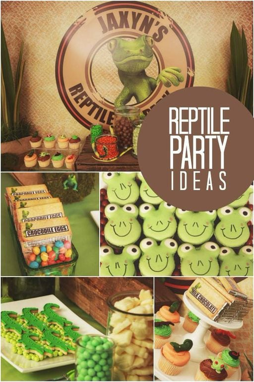 Reptile Birthday Party Decorations