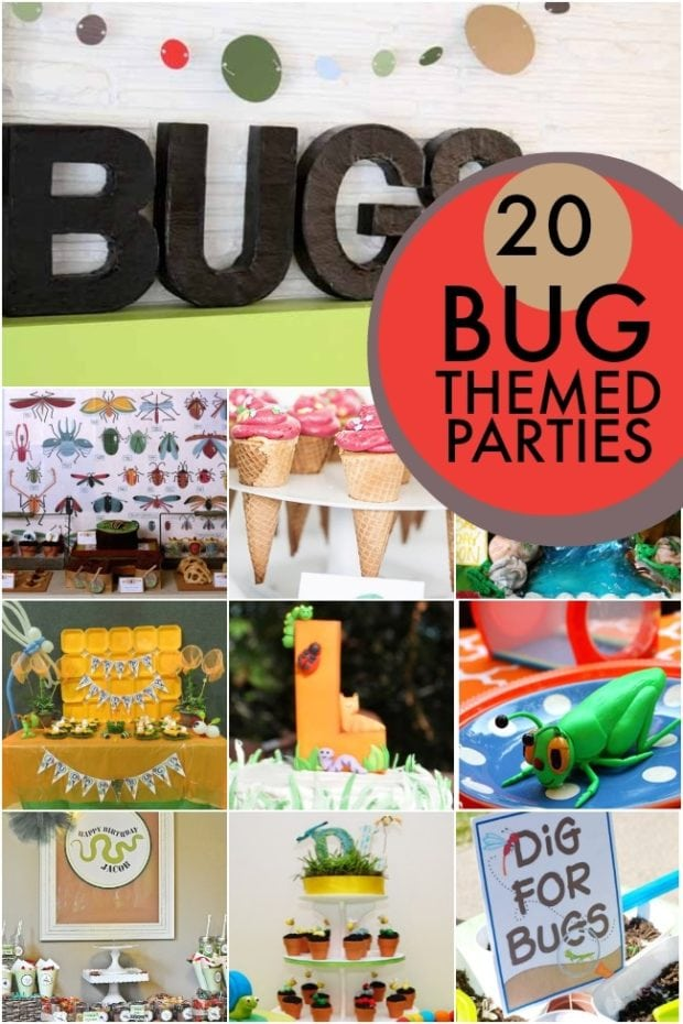 20 Bug Themed Birthday Party Ideas | Spaceships and Laser Beams