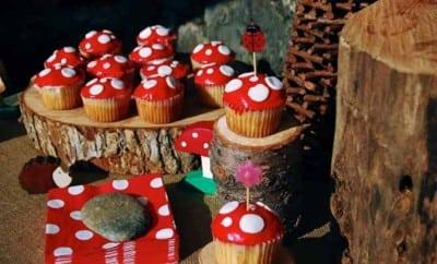 Woodland Gnome Amp Fairy Birthday Boy Girl Spaceships