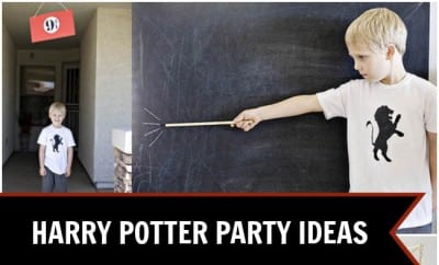 Harry Potter Birthday Ideas For Boys