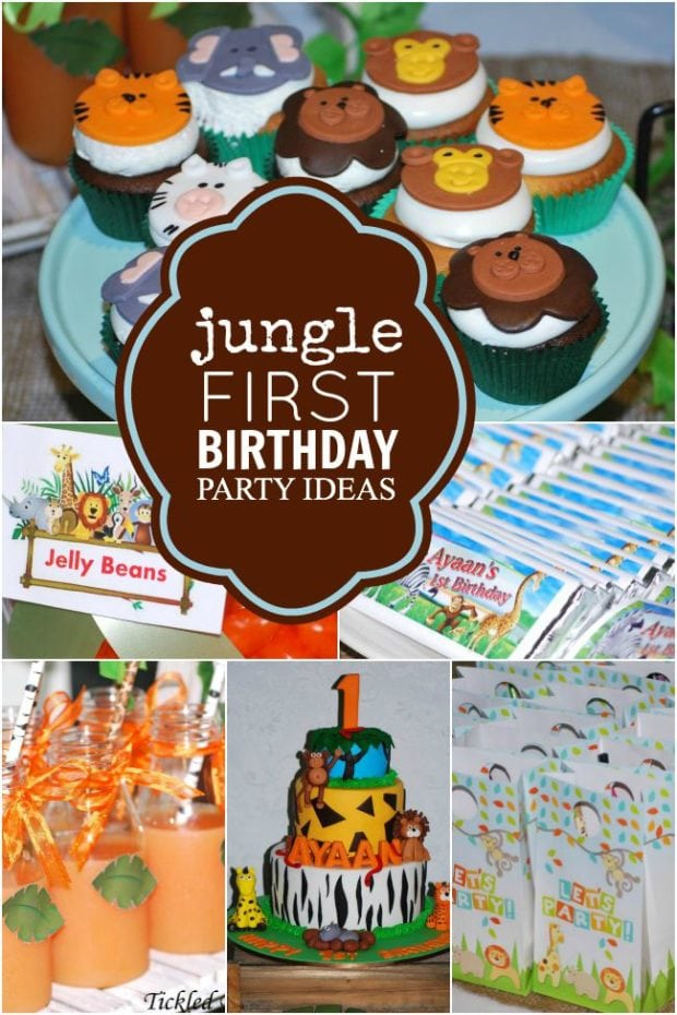 get wild  a jungle safari first birthday party