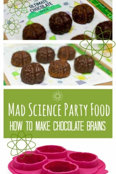 Mad Science Party Food Ideas Brain Ice Cube Tray Chocolate