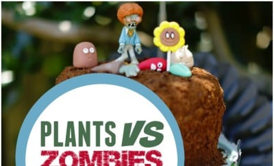 Boys Plants vs Zombies Birthday Party