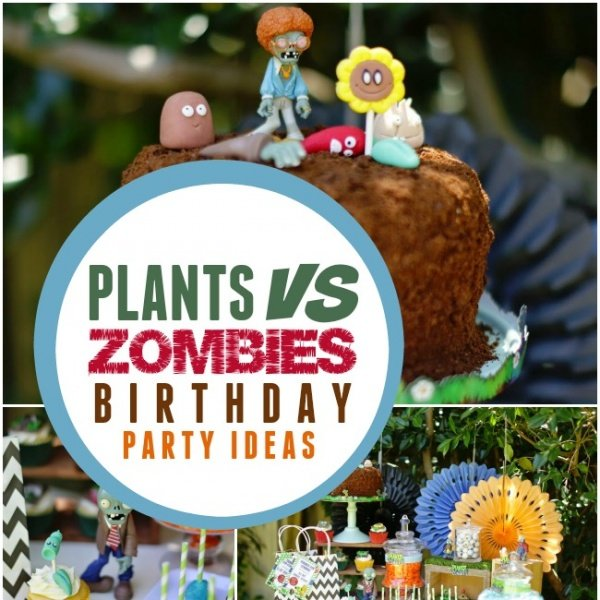 A Boy S Plants Vs. Zombies Birthday Party