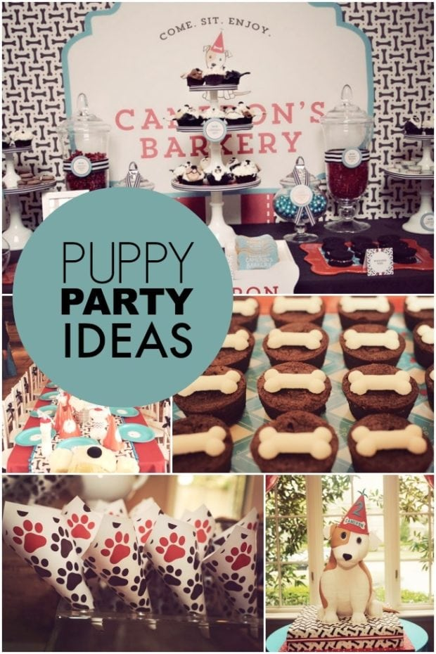 A Dog-gone Cute Puppy Paw-ty (Boy Birthday Party ...