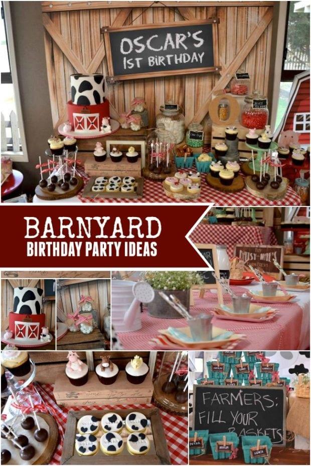 Down on the Farm: A Boy s Rustic Barnyard 1st Birthday ...