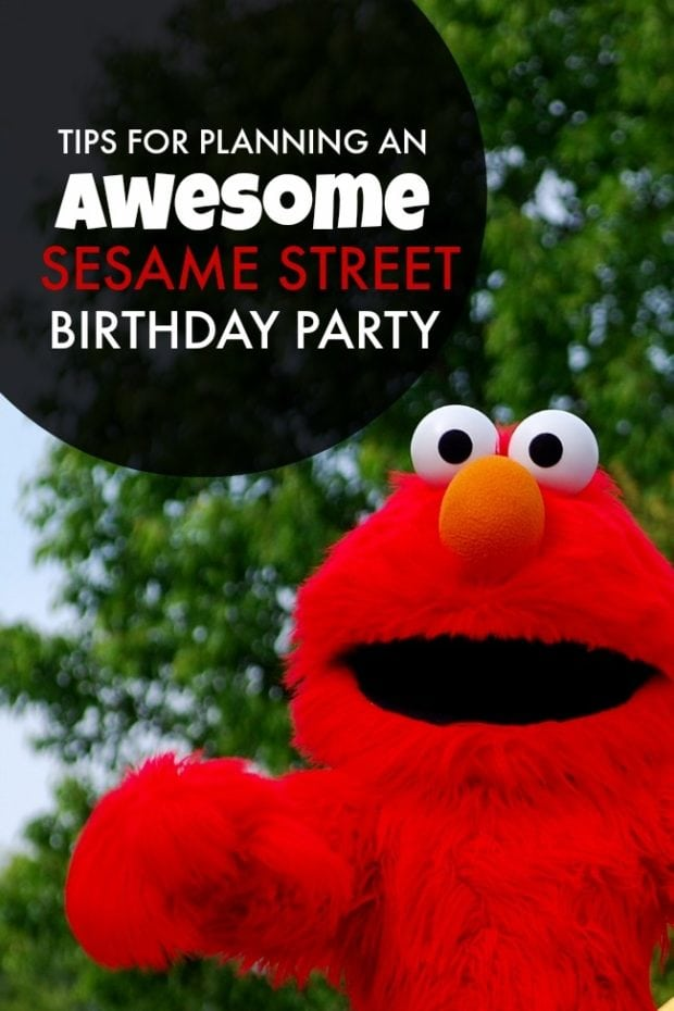 Sesame Street Birthday Party Ideasjpg