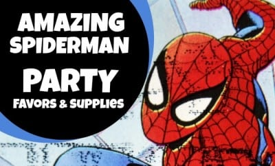 The Amazing Spiderman Birthday Party Favors Supplies