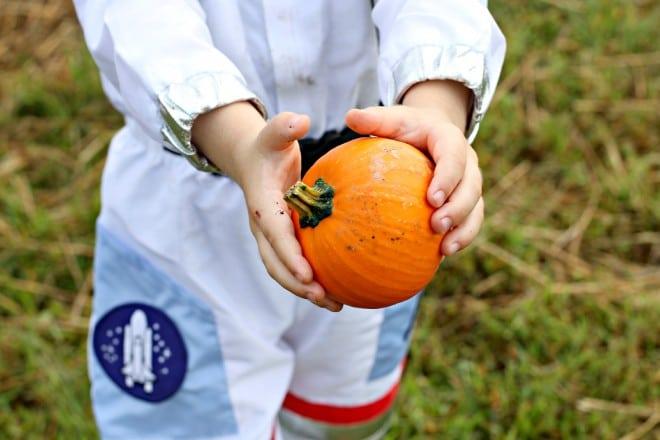 Kid's Picking Halloween Pumpkins