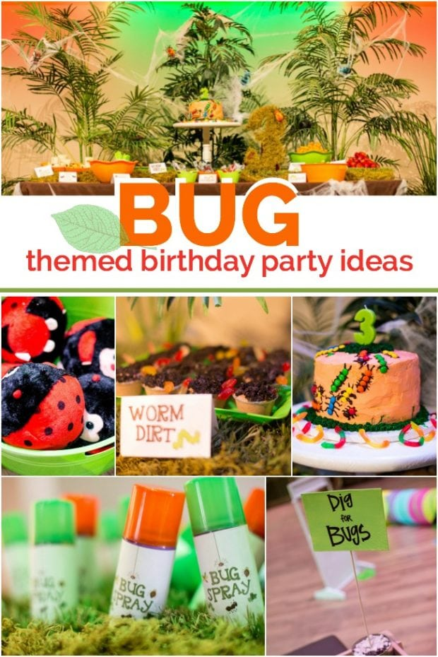 Bug Themed Birthday Party Ideas