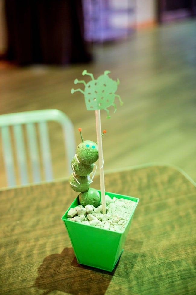 Boys Bug Themed Birthday Party Centerpiece