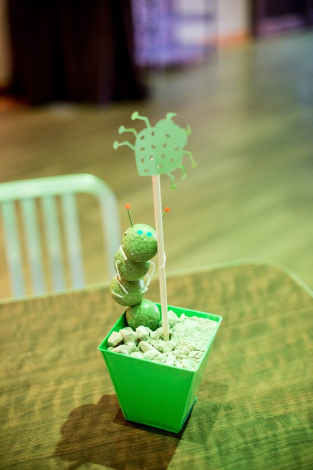 Let's Get Buggy—A Boy's Bug Themed 3rd Birthday Party | Spaceships and Laser Beams