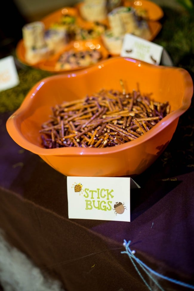 Bug Themed Boys Birthday Party Food Ideas