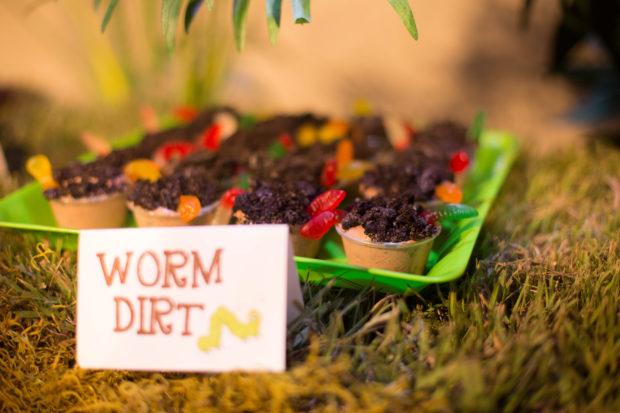 Bugs Worms And Beetles Kids Birthday Cake