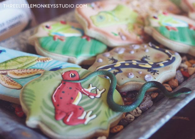 Boys reptiles-amphibians-birthday-party-cookies