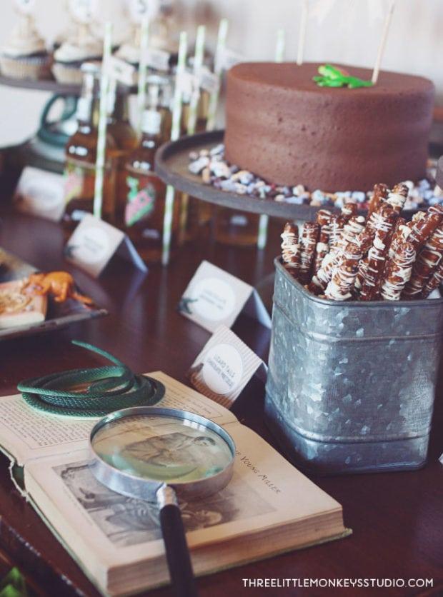 Boys reptiles-amphibians-birthday-party-table idea