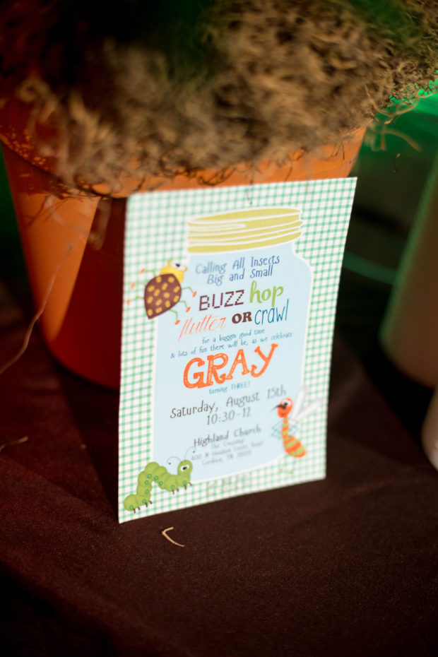 Let\'s Get Buggy—A Boy\'s Bug Themed 3rd Birthday Party | Spaceships ...
