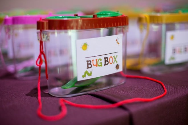 Boys Bug theme Birthday party game