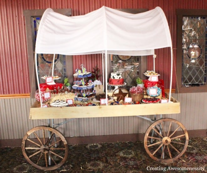 Western Themed Cowboy Party Ideas