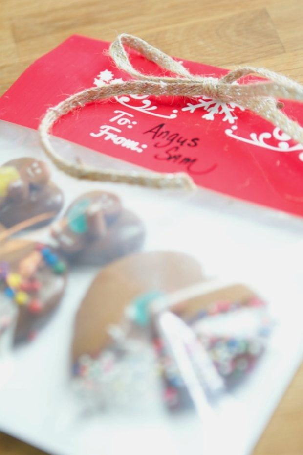 Christmas Cookie Gift Idea