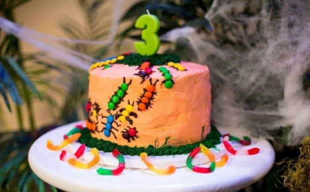 Bug Birthday Cake Katie