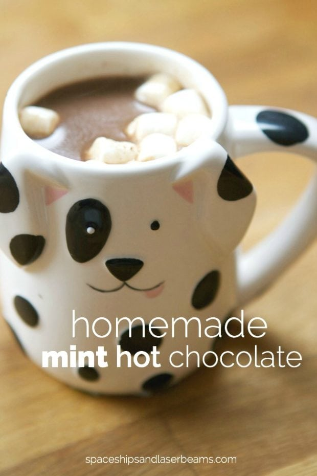 Hot Chocolate from Scratch Recipe