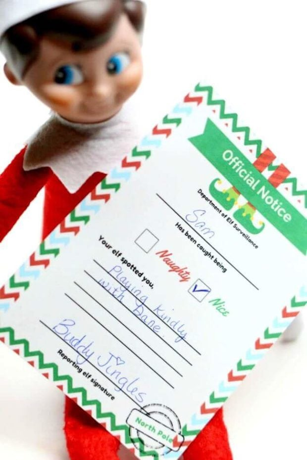 official elf on the shelf naughty or nice notice