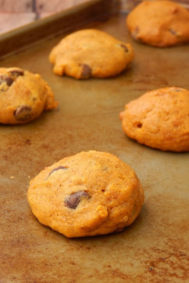 recipe-soft-pumpkin-cookies