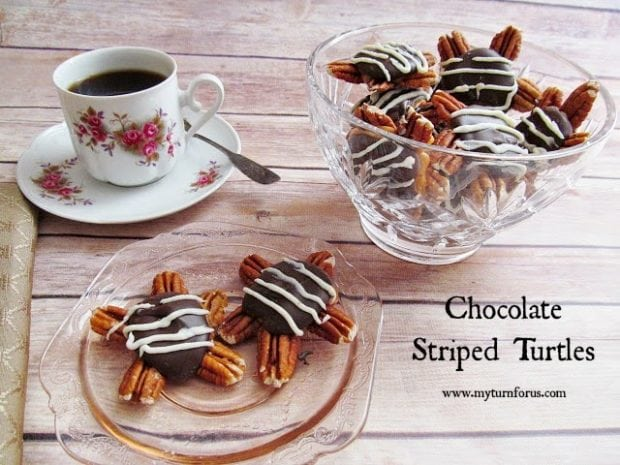 6 Chocolate Striped Turtles