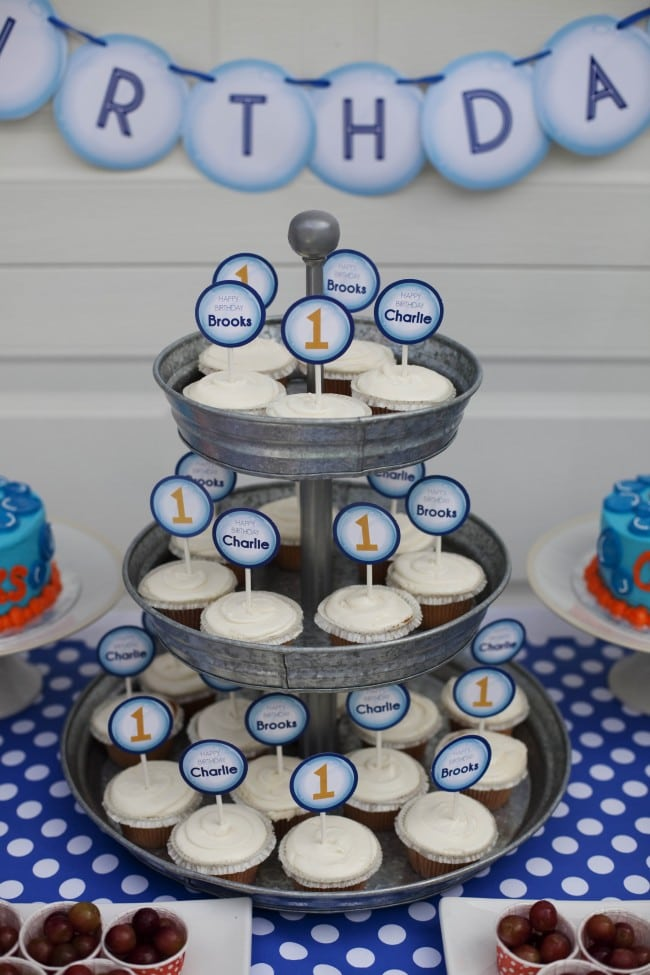 Boys Bubble Themed Birthday Party Cupcake Ideas