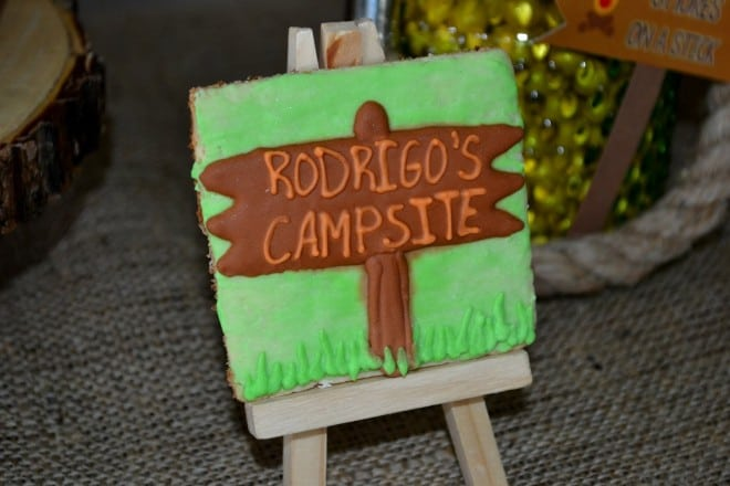 Boys Woodland Camping Birthday Party Cookies
