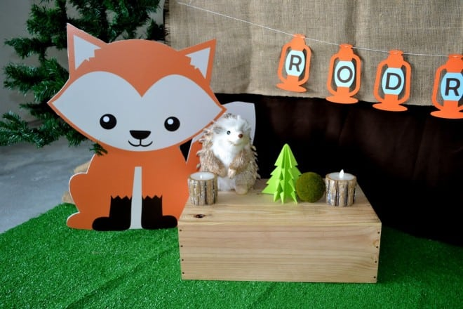 Boys Woodland Themed Camping Animals Decorations
