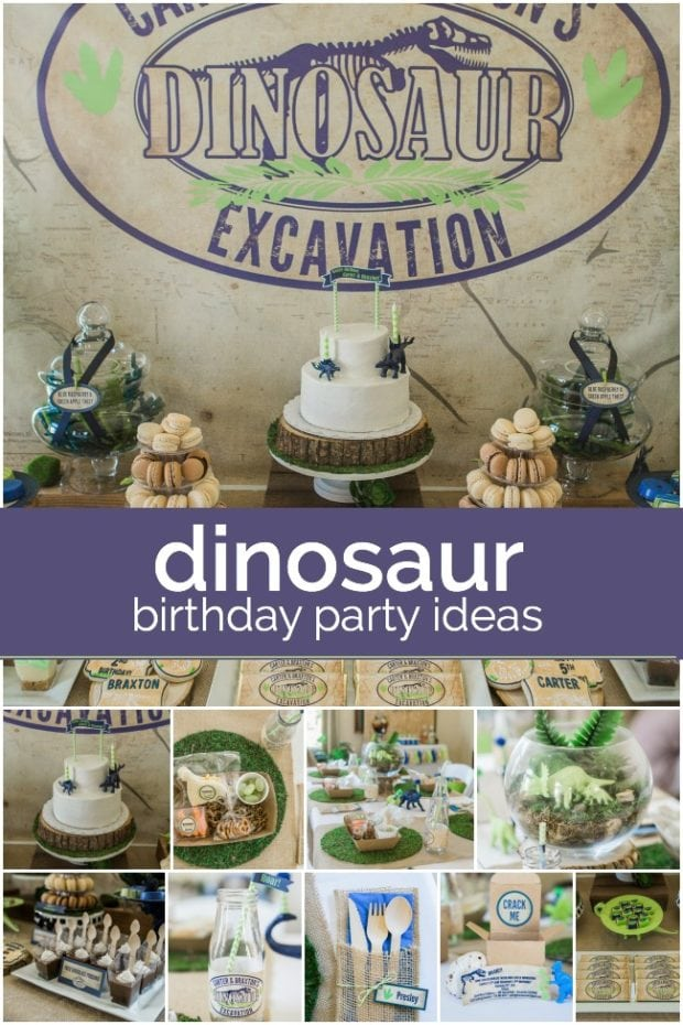 Dinosaur Birthday Party Ideas For 3 Year Old Image Inspiration of