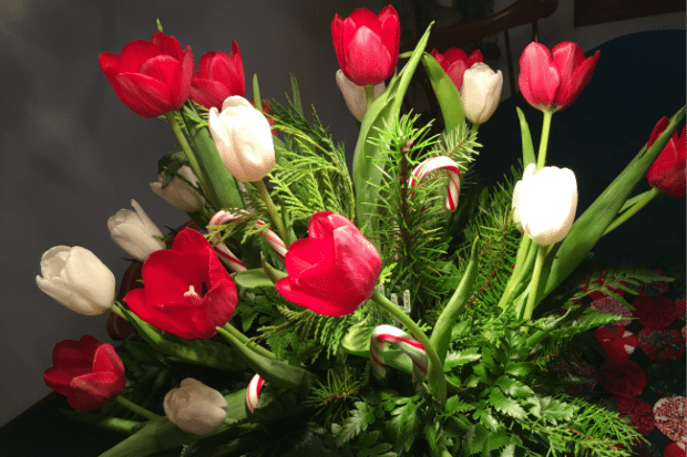 Teleflora Christmas Bouquet