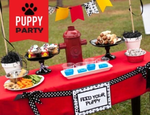 Puppy Party Playdate on a Budget for a PAW Patrol-themed party.