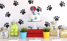 feature-paw-patrol-birthday-party-ideas