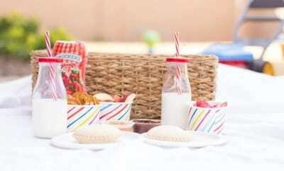 Fun Picnic Ideas for Kids